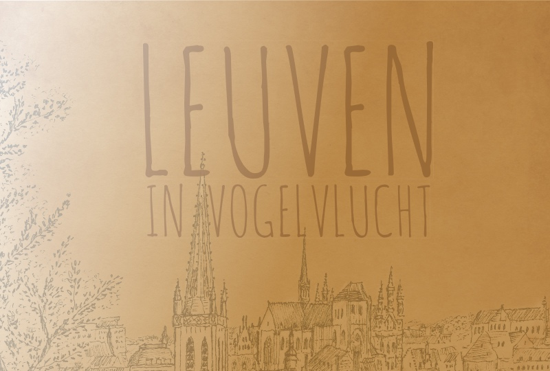 Leuven in vogelvlucht
