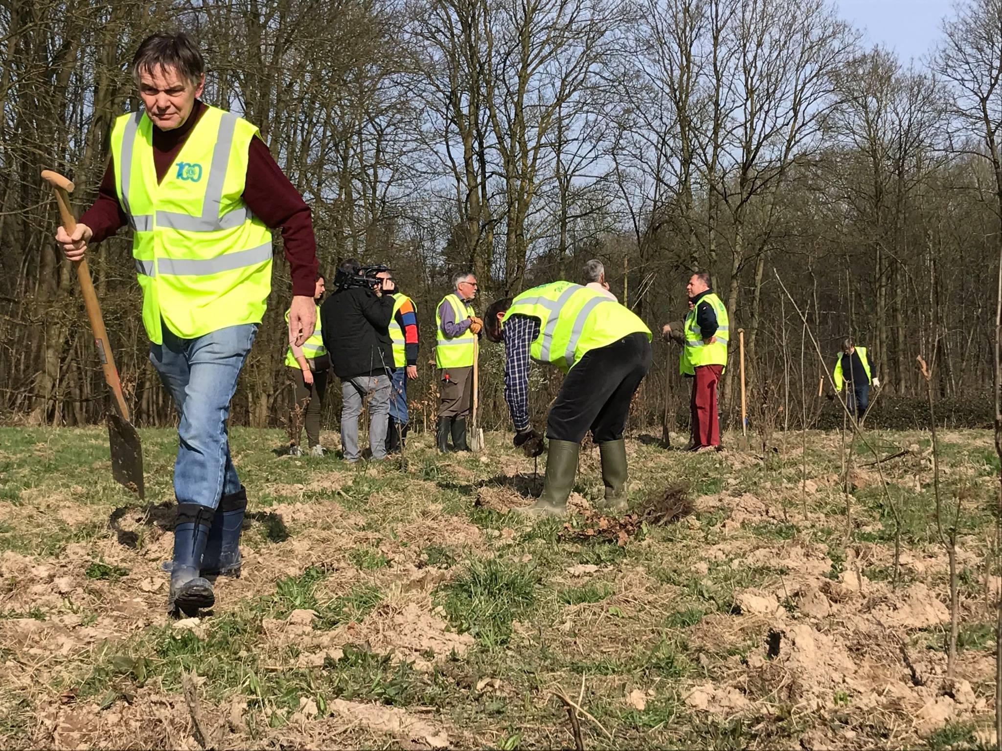 Lions België plant een boom